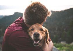 4 conseils santé pour vos animaux