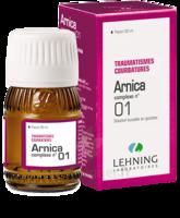 Lehning Arnica Complexe N° 1 Solution Buvable En Gouttes Fl/30ml à TOULOUSE