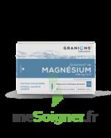 Granions De Magnesium 3,82 Mg/2 Ml S Buv 30amp/2ml à TOULOUSE