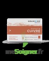Granions De Cuivre 0,3 Mg/2 Ml S Buv 30amp/2ml à TOULOUSE