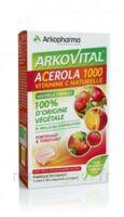 Arkovital Acérola 1000 Comprimés à Croquer B/30 à TOULOUSE