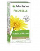 Arkogélules Piloselle Gélules Fl/45 à TOULOUSE