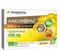 Arkoroyal Gelée Royale Bio 1000 Mg Solution Buvable 20 Ampoules/10ml à TOULOUSE