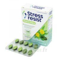 Stress Resist Comprimés Stress & Fatigue B/30 à TOULOUSE