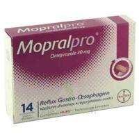 Mopralpro 20 Mg Cpr Gastro-rés Film/14 à TOULOUSE