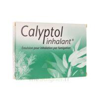 Calyptol Inhalant, émulsion Pour Inhalation Par Fumigation à TOULOUSE
