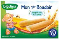 Bledina Mon 1er boudoir (6x4 biscuits) à TOULOUSE