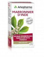 Arkogelules Marronnier D'inde Gélules Fl/45 à TOULOUSE