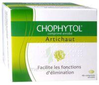 Chophytol Cpr Enr 6plaq/30 à TOULOUSE
