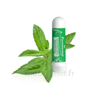Puressentiel Respiratoire Inhaleur Respiratoire Aux 19 Huiles Essentielles - 1 Ml à TOULOUSE
