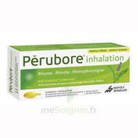 Perubore Caps Inhalation Par Vapeur Inhalation Plq/15 à TOULOUSE