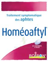 Boiron Homéoaftyl Comprimés à TOULOUSE