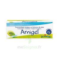 Boiron Arnigel Gel T(alumino-plastique)/45g à TOULOUSE