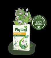 Phytoxil Toux Sans Sucre Sirop Adulte Enfant +6 Ans 12 Sachets/10ml à TOULOUSE
